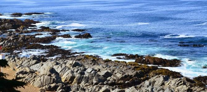 Isla Negra: Neruda's Paradise