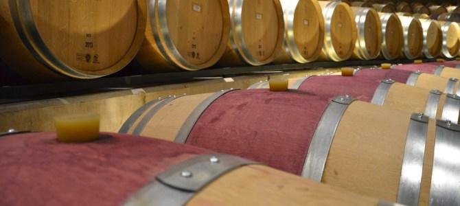 Colchagua Valley Wine Tour