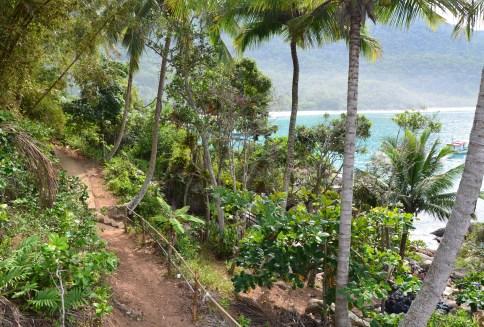 Trail at Praia do Aventureiro on Ilha Grande, Brazil