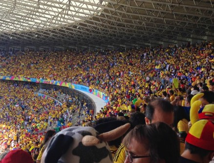 Greece vs Colombia 2014 World Cup at Estádio Mineirão in Belo Horizonte, Brazil