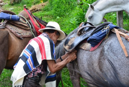 Getting the horses ready in Salento, Quindío, Colombia