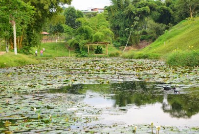 Bigger pond at Parque Lago de la Pradera in Dosquebradas, Risaralda, Colombia