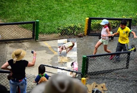 Juégatela en el Cerdódromo at Panaca in Colombia