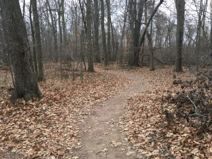 Trail at Coffee Creek Watershed Preserve in Chesterton, Indiana