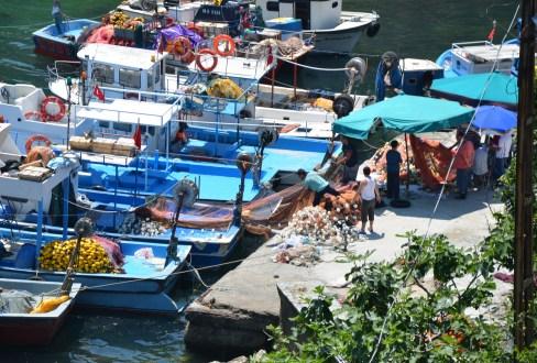 Fishing boats in Garipçe, Sarıyer, İstanbul