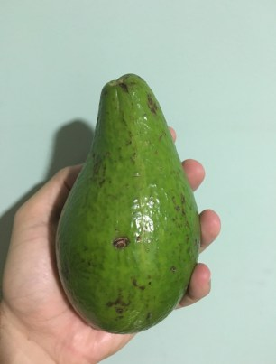 Aguacate Fruit in Colombia