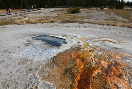 Ear Spring on Geyser Hill at the Upper Geyser Basin in Yellowstone National Park, Wyoming