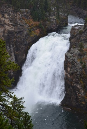 Upper Falls from Uncle Tom's Point at Grand Canyon of the Yellowstone in Yellowstone National Park, Wyoming