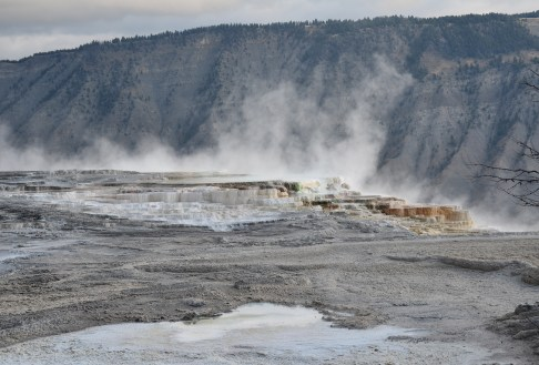 Canary Spring at Mammoth Hot Springs in Yellowstone National Park, Wyoming