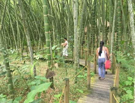 Parque de la Memoria Indígena at Parque Consotá in Galicia, Risaralda, Colombia