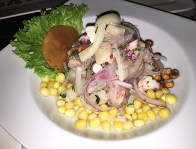 Ceviche at Terra Inca in Popayán, Cauca, Colombia