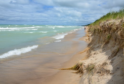 Trail #10 at Indiana Dunes State Park