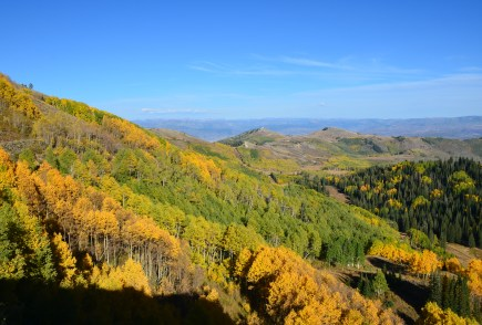 Guardsman Pass in the Wasatch National Forest, Utah