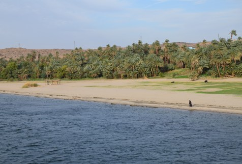 Cruising the Nile in Egypt