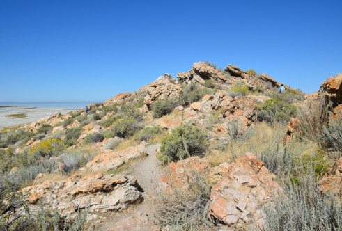 Lady Finger Point Trail at Antelope Island State Park in Utah