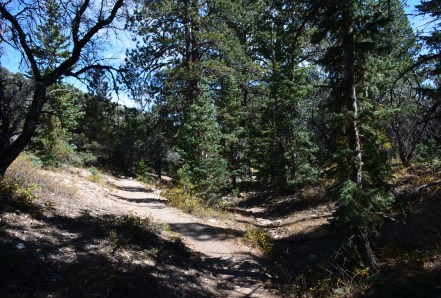 Osceola Ditch Trail on Wheeler Peak Scenic Drive in Great Basin National Park, Nevada