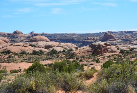 Petrified Dunes Viewpoint at Arches National Park, Utah
