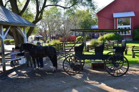 Horse and buggy ride at Amish Acres in Nappanee, Indiana