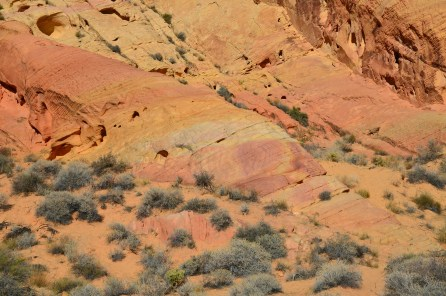 Colorful sandstone on the Rainbow Vista Trail at Valley of Fire State Park in Nevada
