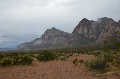 Pine Creek Canyon at Red Rock Canyon National Conservation Area in Nevada