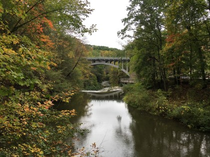 View from the Covered Bridge at Mill Creek Park in Youngstown, Ohio