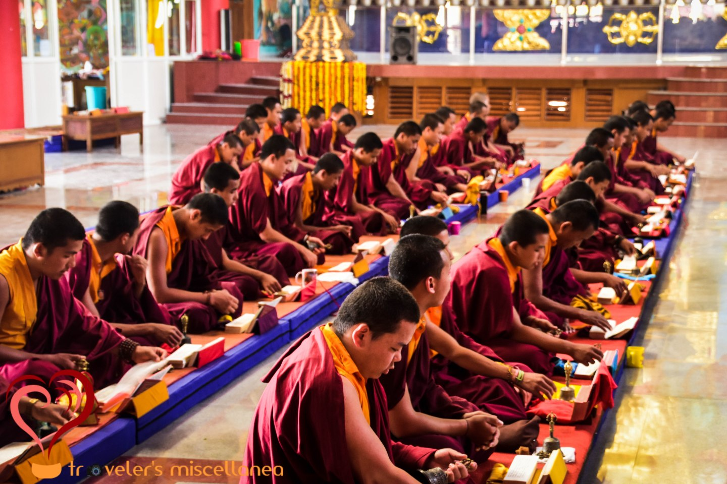 The Monks of Bylakuppe