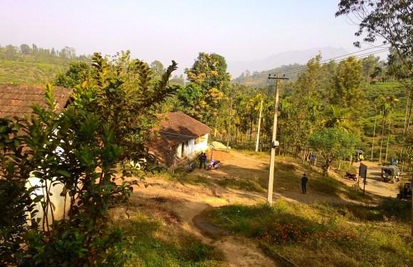 Land of Paddy Fields: Wayanad, Kerala