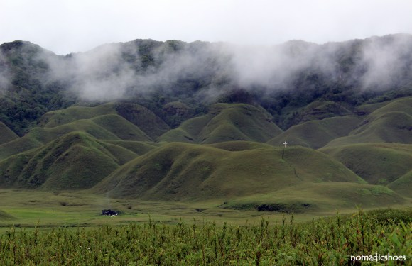 Dzokou Valley : Valley of Flowers of the North East