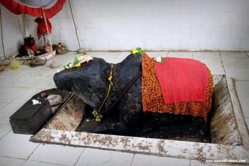 Nandi Temple at Hajo