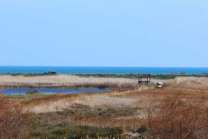 Marj_Moro_valencia_nomadic_panorama-min-scaled