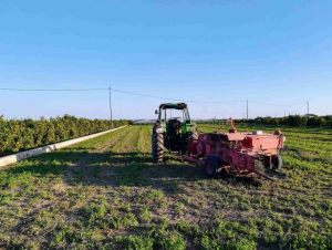 agricultura_huerta_nomadic-min-scaled-e1585819046662