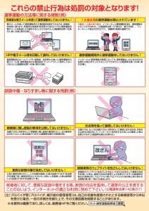 インターネット選挙運動解禁に関する説明資料_1
