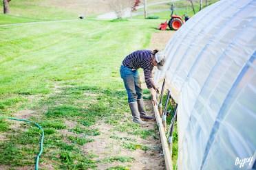 Annie's Farm 060 copy