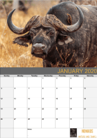 Sample page. Click to download the full calendar.