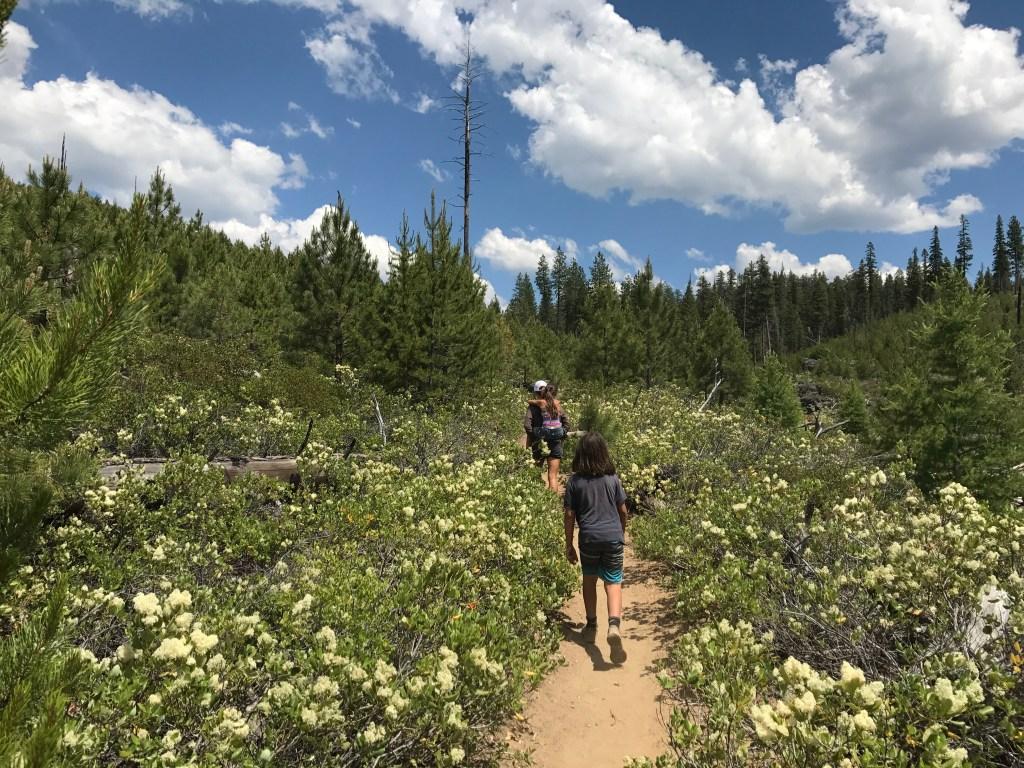 Hiking to Rock Waterslide on summer adventure road trip