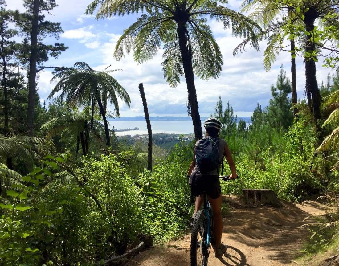 Rotorua, 3 week New Zealand Itinerary