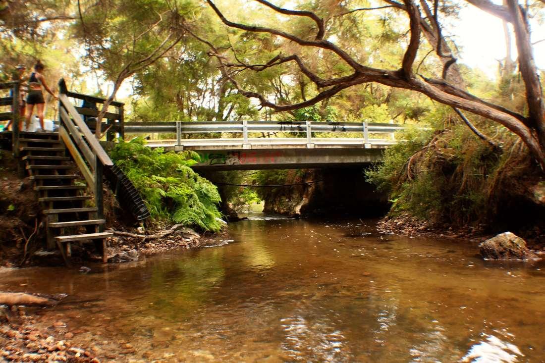Hot Spring by Rotorua, 3 week New Zealand Itinerary