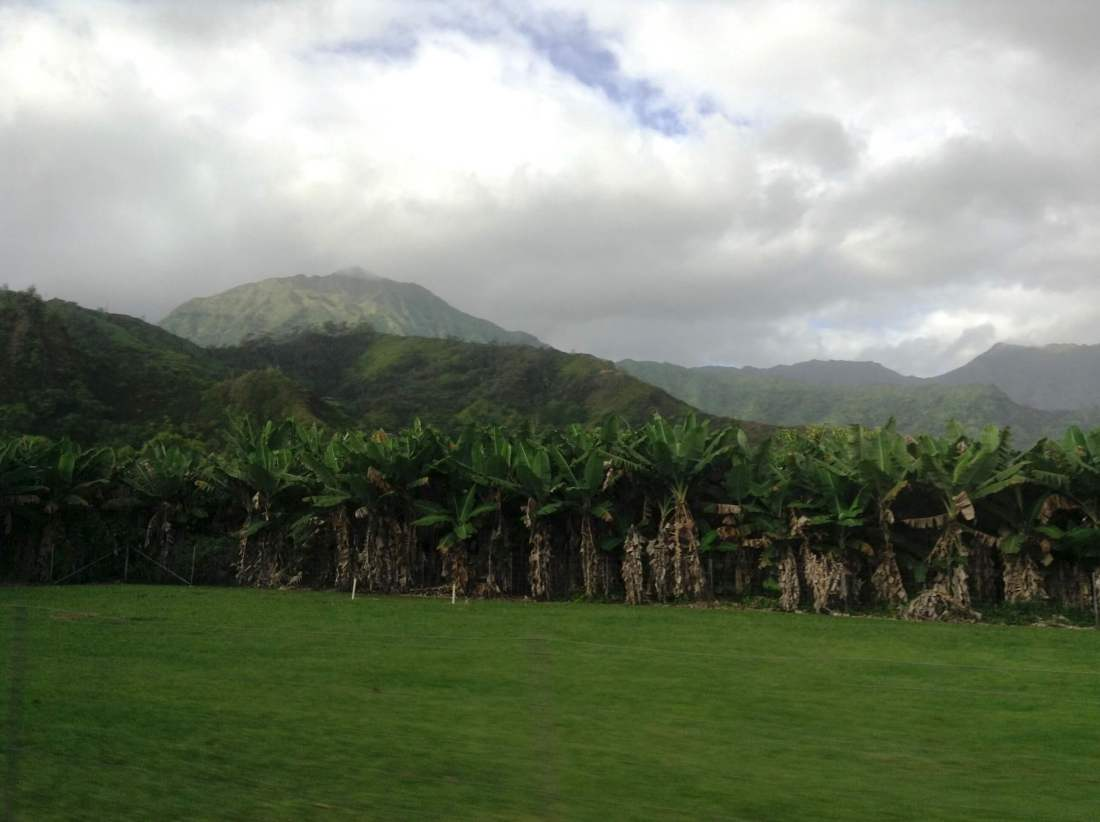 Kauai, Adventurous Warm Weather Winter Destinations for When You're Sick of the Snow