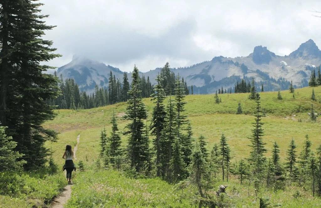 best campground Washington mount rainier