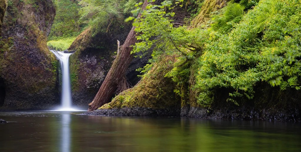 Best hikes of the PNW: punchbowl falls