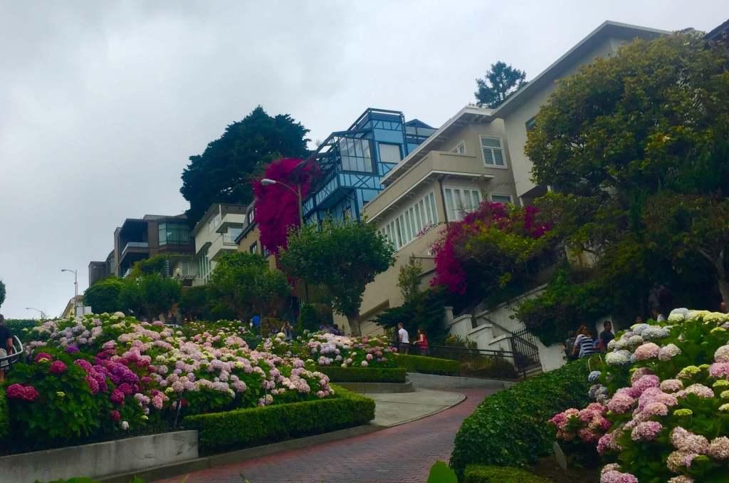 2 week California coast road trip itinerary: San Francisco