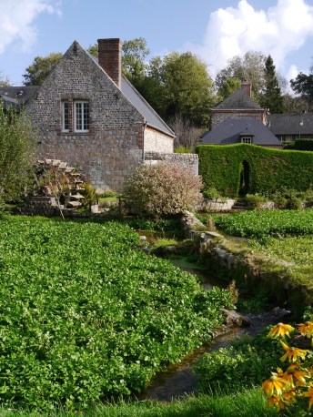 The cress beds