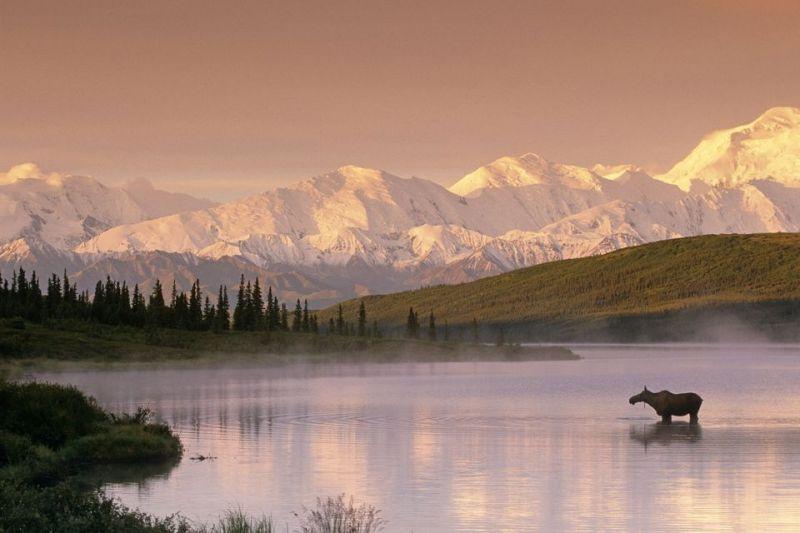 Denali National Park Alaska mountains