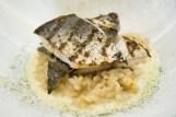 grilled spanish mackerel - élan