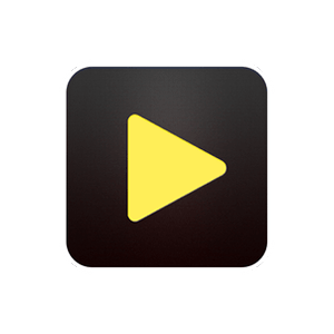 Videoder APK Latest Version 14.0 for Android (Video Downloader)