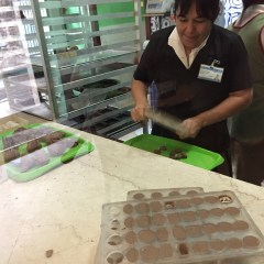 The Havana Chocolate Museum, a rich experience