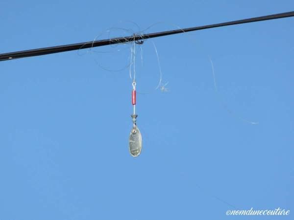 Nom d'une couture ! La pêche au Bassin d'Arcachon