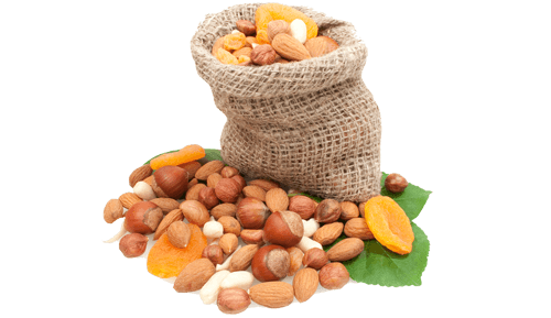 seeds-and-nuts-icon