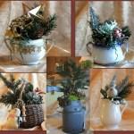 Decorations, Wins &  Hodgepodge