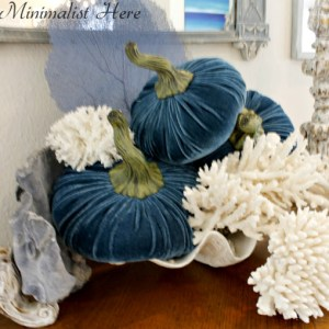 Coastal Fall Decorating